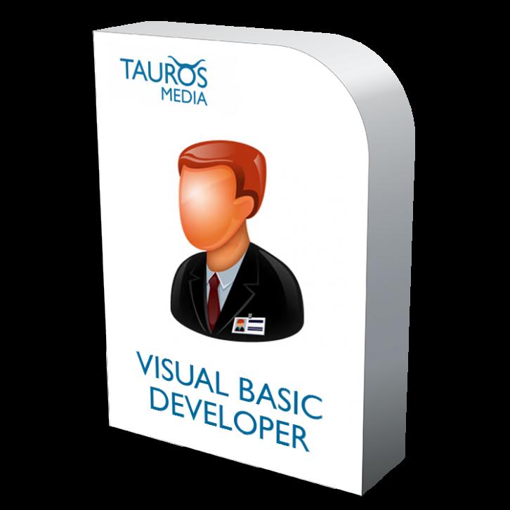Visual Basic developer